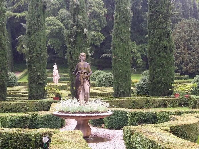 Floricoltura Billo si occupa da anni di ricerche storiche relative a questa varietà di Dianthus, per poter testimoniare al meglio il forte impatto che ha avuto nel territorio Veneto-Lombardo e nazionale. Le speranzine