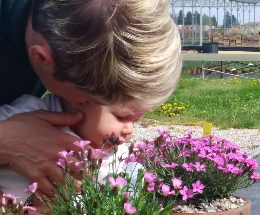 la festa della mamma riassunta in una foto! Una bambina intenta a sentire i primi profumi di fiori di garofani in braccio della mamma.