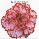 Garofano Standard Carnation DGD Zarco è un garofano nelken dal colore rosa lilla con merlatura tinta vinaccia