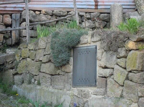 Moltissime varietà di garofani plumarius sono state spesso utilizzate per condizioni considerate impegnative come giardini rocciosi, muretti a secco o condizioni simili.